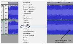 how to remove vocals from a song completely