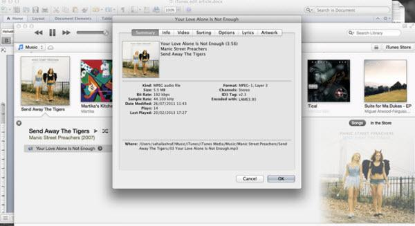 8 Ways to Edit iTunes Music Library