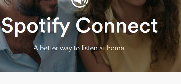 How Many Do You Know about Spotify Beta