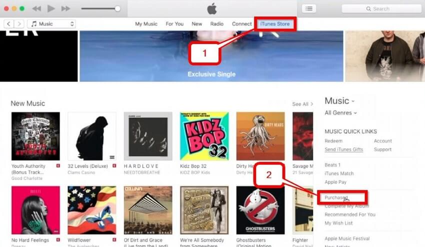 How to Download Music from iTunes to Computer-Select the itunes store