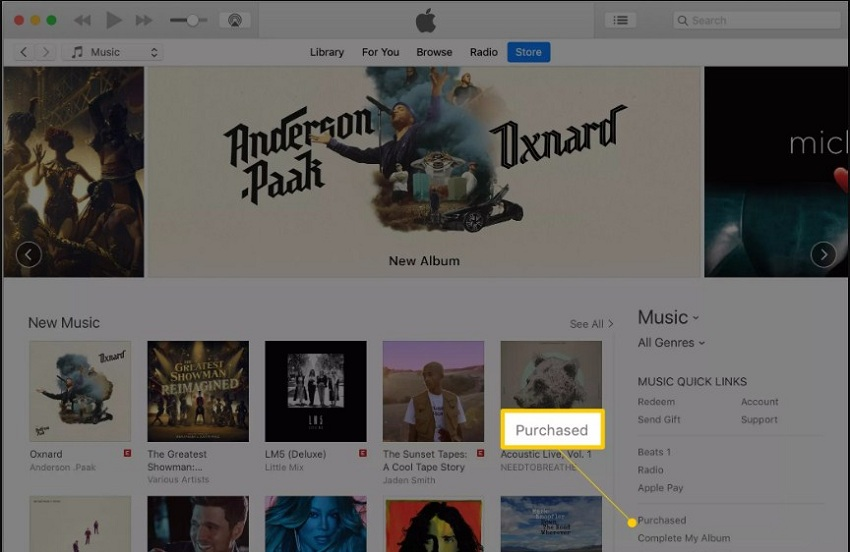 How to Transfer Music from iTunes to iPhone 7/8/8 Plus/X/XR/XS Max Freely 2019- Click Purchase option